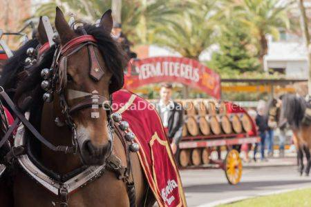 Tres Tombs de Reus