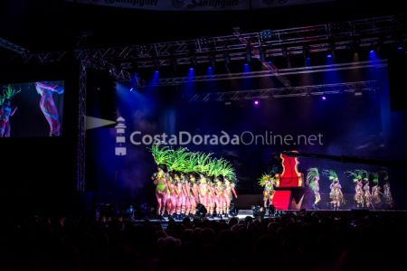 Carnaval-tarragona-disfressa-de-or-2018-tap-13