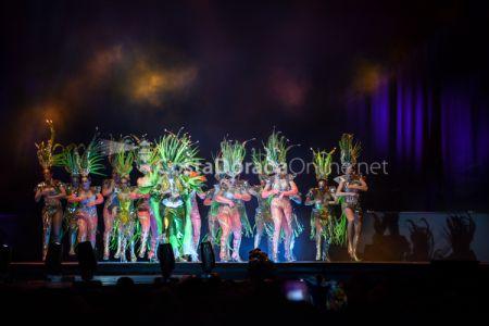 Carnaval-tarragona-disfressa-de-or-2018-tap-146