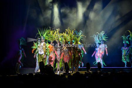 Carnaval-tarragona-disfressa-de-or-2018-tap-151