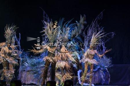 Carnaval-tarragona-disfressa-de-or-2018-tap-29