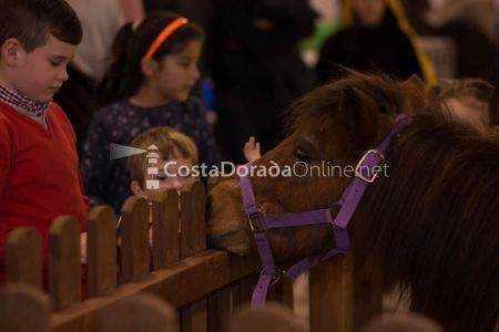 Feria Bestial VIII Edición