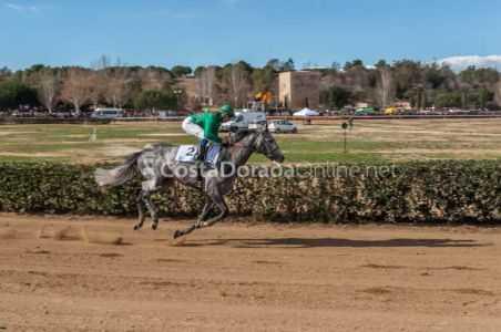 Vilaseca-carreras-caballos-sant-antonio-2018-02