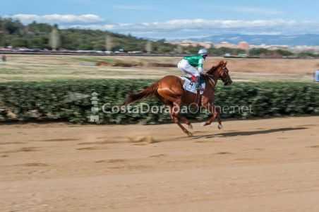 Vilaseca-carreras-caballos-sant-antonio-2018-15