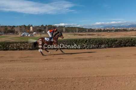Vilaseca-carreras-caballos-sant-antonio-2018-18