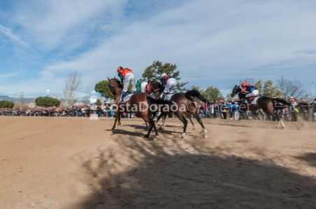 Vilaseca-carreras-caballos-sant-antonio-2018-8