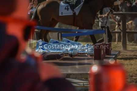 Vilaseca-carreras-de-caballos-sant-antonio-2018-10