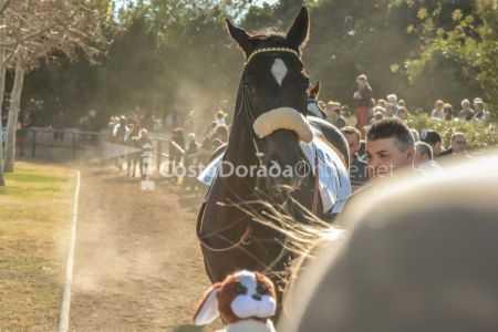 Vilaseca-carreras-de-caballos-sant-antonio-2018-12