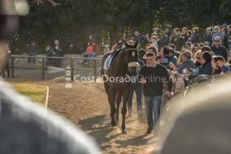 Vilaseca-carreras-de-caballos-sant-antonio-2018-13