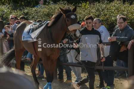 Vilaseca-carreras-de-caballos-sant-antonio-2018-16