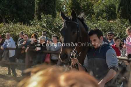Vilaseca-carreras-de-caballos-sant-antonio-2018-17