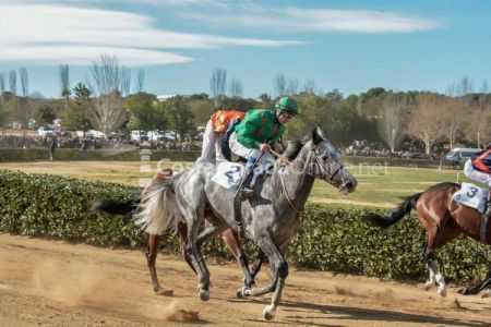 Vilaseca-carreras-de-caballos-sant-antonio-2018-18