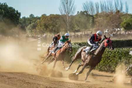 Vilaseca-carreras-de-caballos-sant-antonio-2018-19