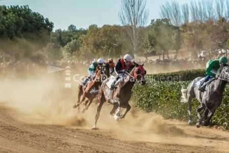 Vilaseca-carreras-de-caballos-sant-antonio-2018-20