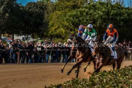 Vilaseca-carreras-de-caballos-sant-antonio-2018-24