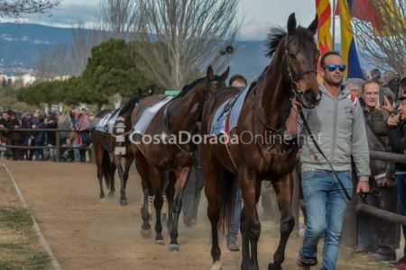 Vilaseca-carreras-de-caballos-sant-antonio-2018-29