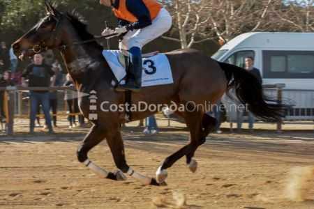 Vilaseca-carreras-de-caballos-sant-antonio-2018-3