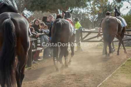 Vilaseca-carreras-de-caballos-sant-antonio-2018-31