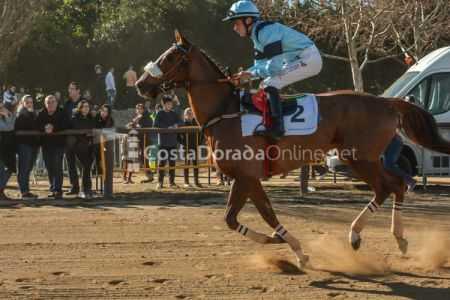 Vilaseca-carreras-de-caballos-sant-antonio-2018-4