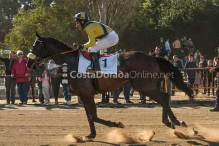 Vilaseca-carreras-de-caballos-sant-antonio-2018-5