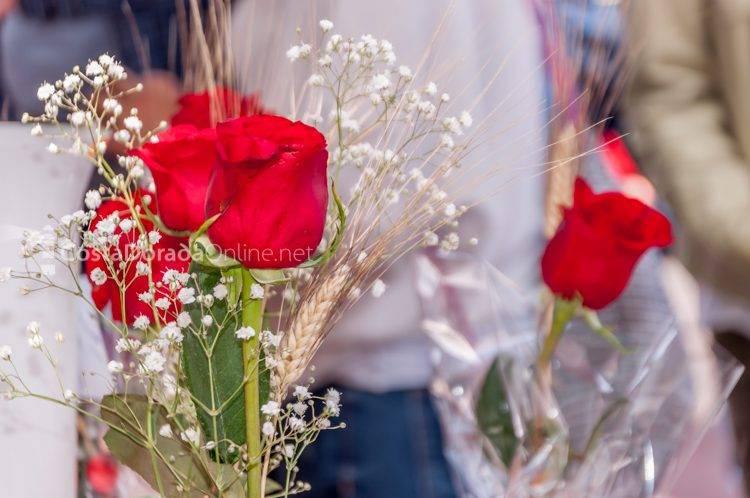 sant jordi fiesta libros rosas reus tarragona 2017