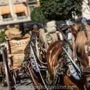 Reus tres tombs