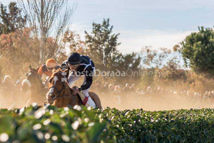 carreras de caballos cos de san antonio vilaseca