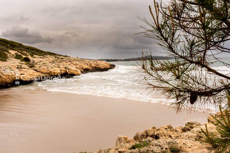 playa morrots de savinosa en tarragona