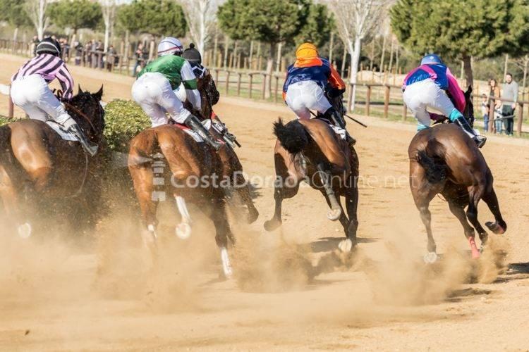 Vila-Seca Cós de Cavalls 2017