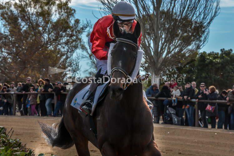 vilaseca carreras de caballos sant antonio 2018